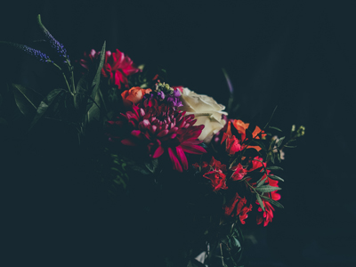 Uutisen kuvituskuvana kukkakimppu.